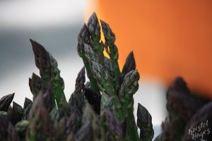 Portland Farmers Market: Asparagus