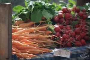 Portland Farmers Market: Carrots & Radishes