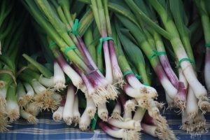 Portland Farmers Market: Scallions