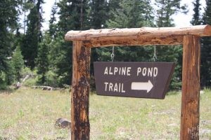 Cedar Breaks National Monument: Alpine Pond Trail
