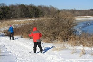 Cross Country Skiers at Kettle Cove