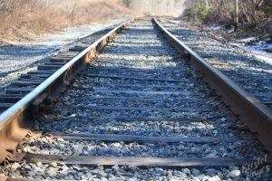 Fore River Sanctuary: Railroad Tracks