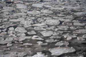 Frozen Salt Water at Kettle Cove