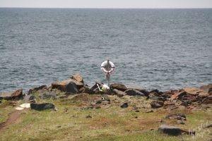 Monhegan Island: Lobster Cove / Beware of Angry Seas
