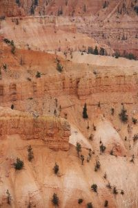 Red Rocks at Cedar Breaks National Monument