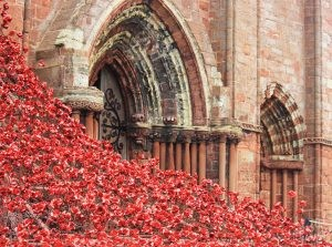 Weeping Window of Poppies at St. Magnus Cathedral, Kirkwall Scotland