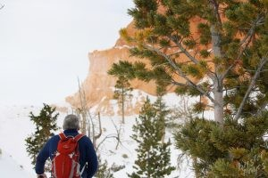 Bryce Canyon: Hiking Queen's Garden Trail