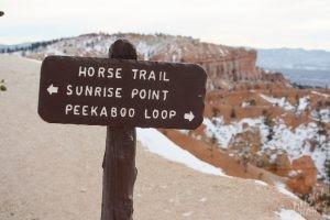 Bryce Canyon Trail Signl