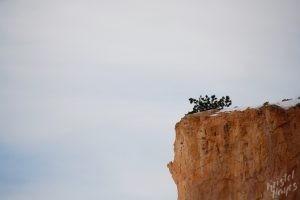 Cliffs in Bryce