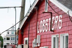 Cooks Lobster