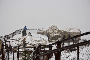 Grand Canyon Snow Storm