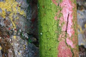Charles Fort Textures-Kinsale, Ireland