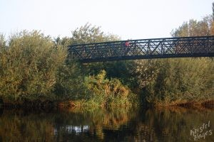 Morning Traffic Carlow Footbridge-River Barrow, Ireland