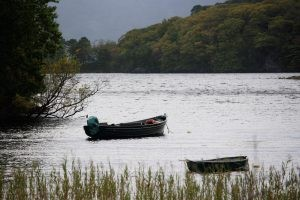 Muckross Lake-Killarney National Park, Ireland