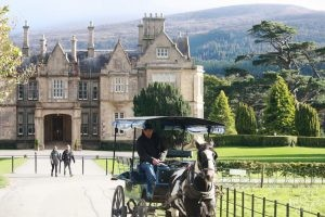 Visiting Muckross House-Killarney National Park, Ireland
