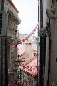 Flags, Old City, Dubrovnik Croatia