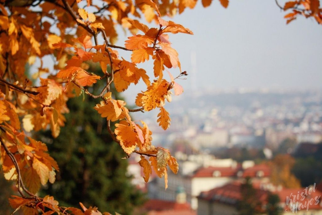 Fall in Prague